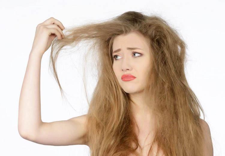 cabello reseco