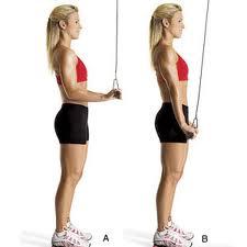 triceps-polea