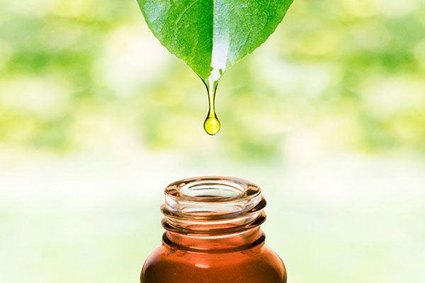 obtencion-aceites-esenciales