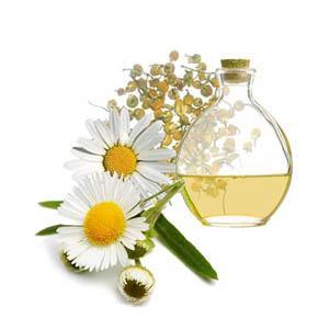 aceite-esencial-de-manzanilla-o-camomila
