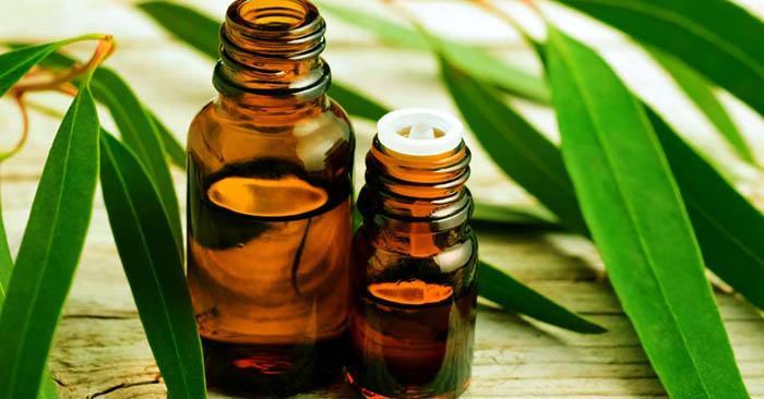 aceite de eucalipto para las alergias