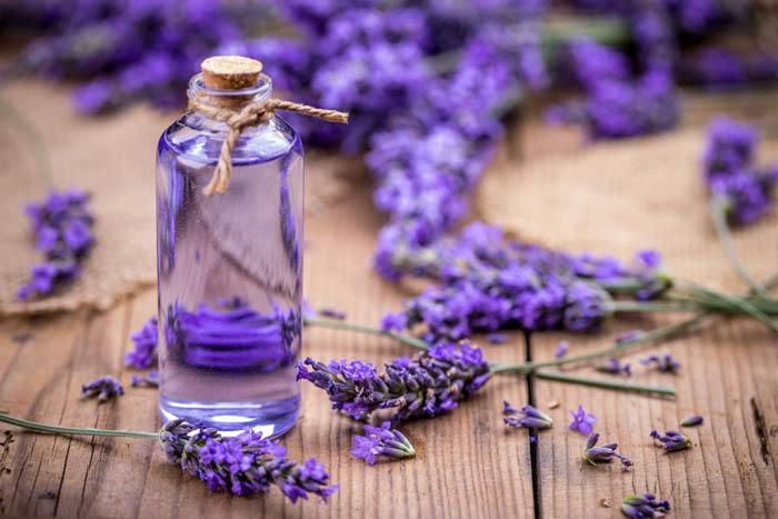 aceite de lavanda para las alergias