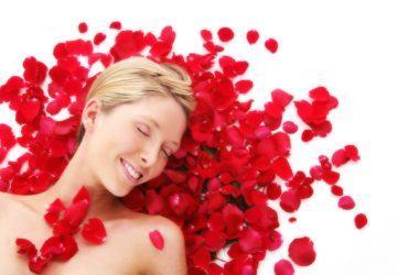 rosas belleza