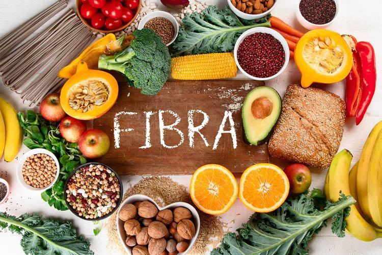 fibra alimentaria