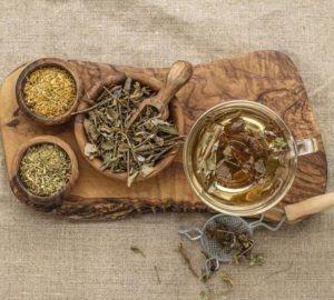 plantas medicinales para la bronquitis