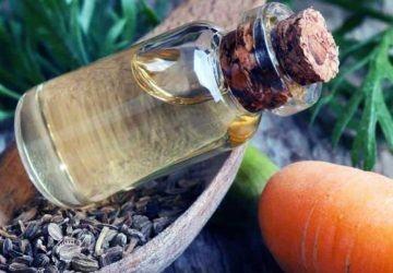 aceite esencial de semillas de zanahoria